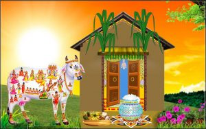 Images Of Thai Pongal Wishes