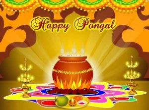 Thai Pongal Pictures 2019