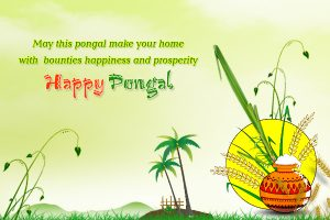 Thai Pongal Greeting Image
