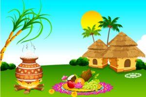 Thai Pongal Festival Images