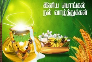 Thai Pongal Images Download