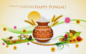 Images Of Thai Pongal