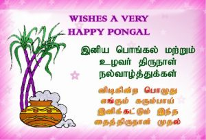Thai Pongal 2019 Wishes Images