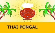 Thai Pongal