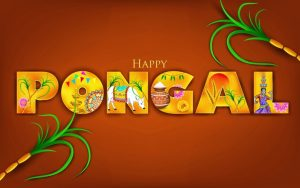 Thai Pongal Images Hd